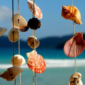 seashell_chime284