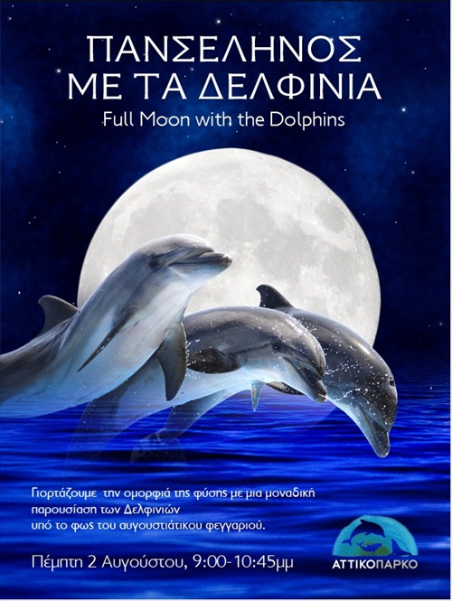 dolphins-moon2