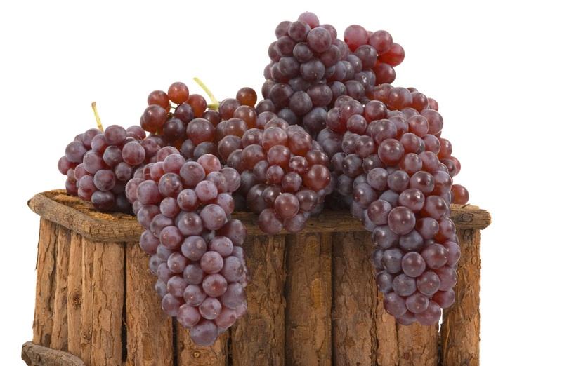 GrapesBasket