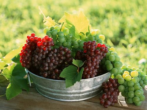grapes-widescreen-wallpaper-3