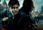 harry_and_voldemort_by_mike1306-d46tj8l