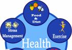 health-wheel1