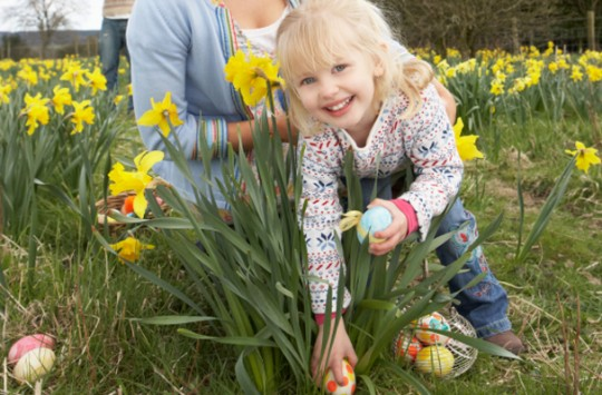 easter-egg-hunt-ideas_607x400-540x355