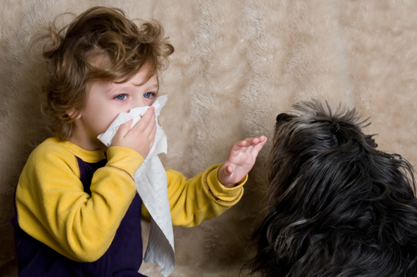 sneezing-child-with-dog