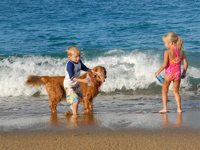 little-kids-playing-on-beach-with-dog