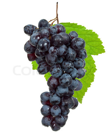 Fresh black grapes with leaves