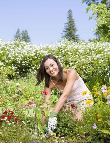 plantation-gardening