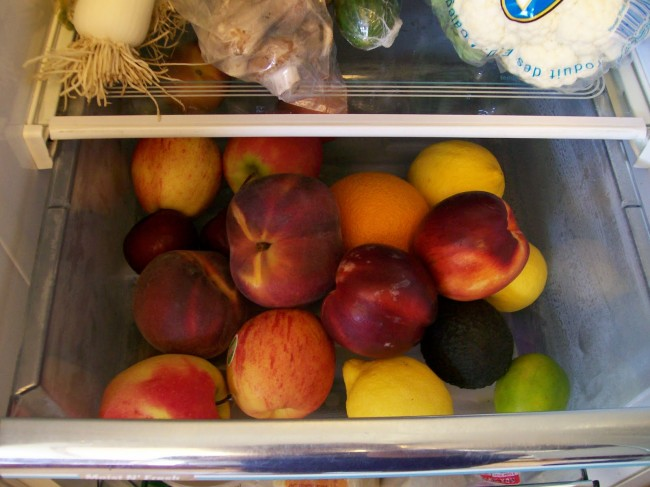 Shellys Fridge Fruit Bin
