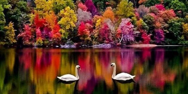 New Hampshire, ΗΠΑ