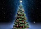 Christmas-Tree-HD-Wallpaper