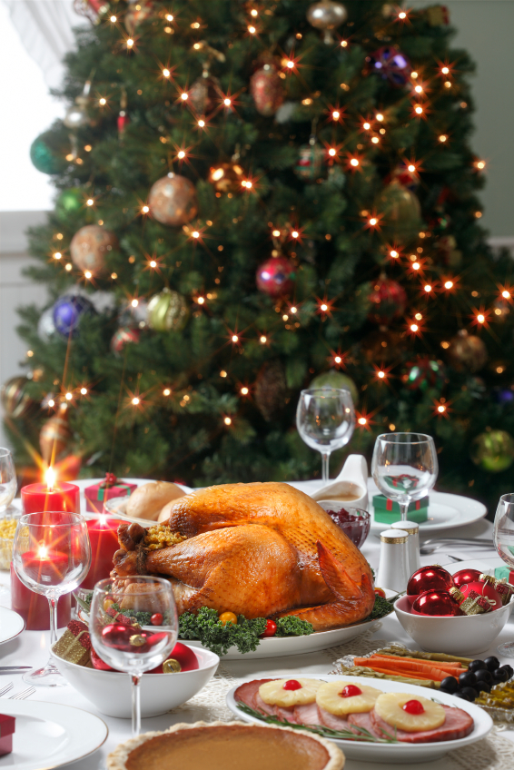 Christmas-Turkey1