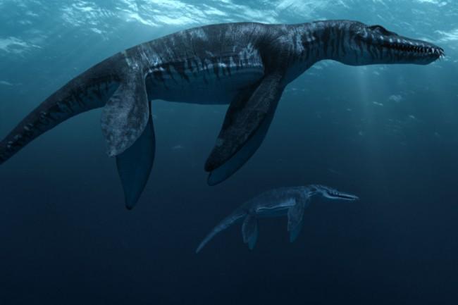0027_SeaRex_Liopleurodon_170dpi