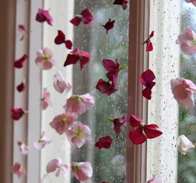 Μπετονια λουλουδια