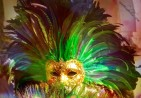 carnival-feathers-1