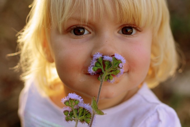 izzy smelling flowers