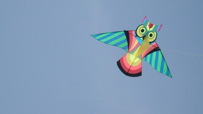 kites-pics