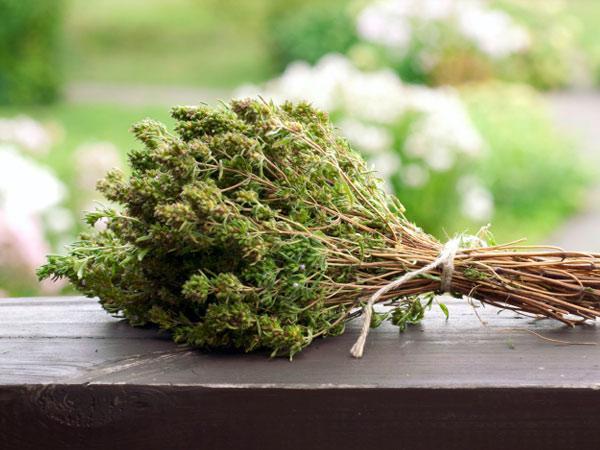 dried-thyme-herb-TS-158731706