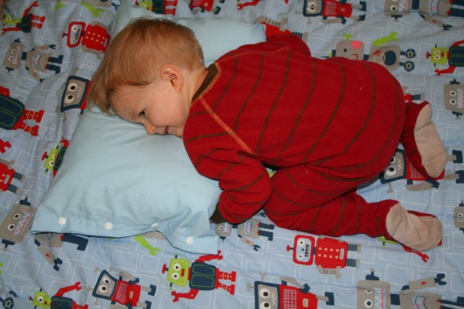 ezra snuggle pillow full pic