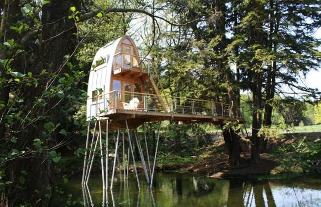 Bauraum-Treehouse-1024x662