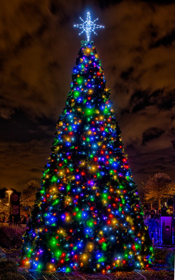 Curtis-Hixon-Park-Christmas-Tree1