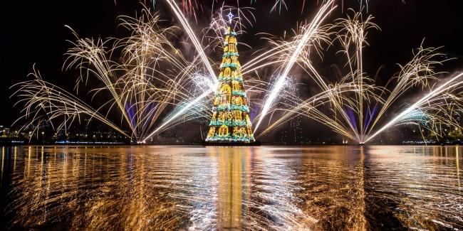 o-CHRISTMAS-TREE-facebook