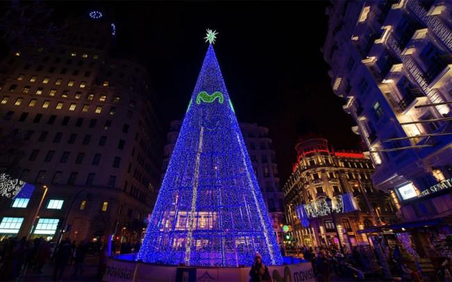 tree-madrid_3129378k