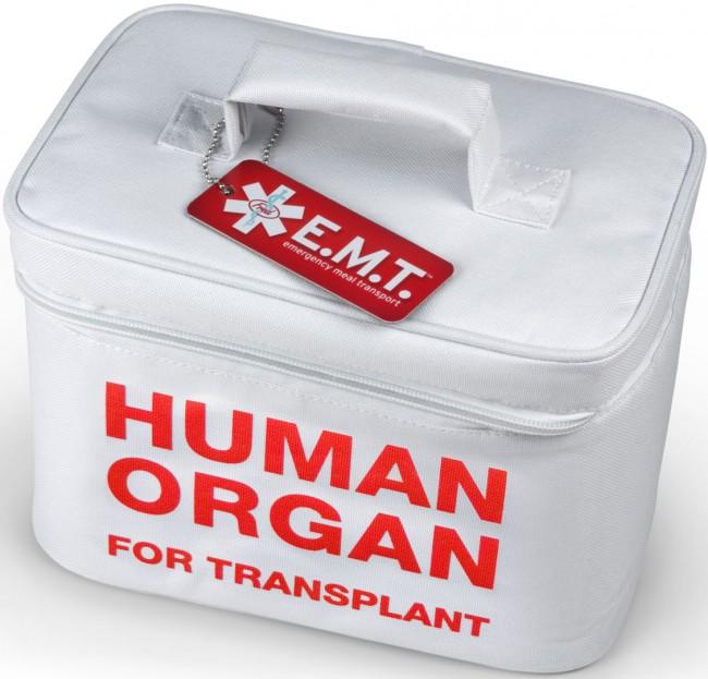 ανθρωπινα οργανα2
