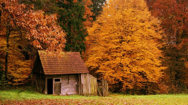 the-cabin-in-the-autumn-woods-wallpaper-539dee6d09aae