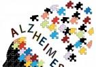 bigstock-Alzheimer-s-disease-concept-47039998