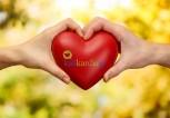 protectheart_kalikardia_625