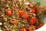 2815d-lentil-tomato-salad