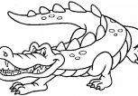 alligatore-disegno-da-colorare-gratis