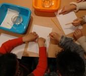 Εκπαιδευτικά Προγράμματα στο Ενυδρείο Κρήτης
