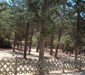 Στο Οικολογικό Πάρκο Ψυχικού