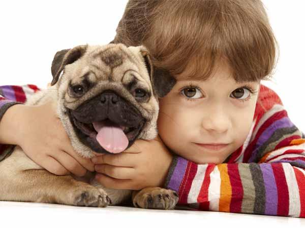 27-child-pet-270712