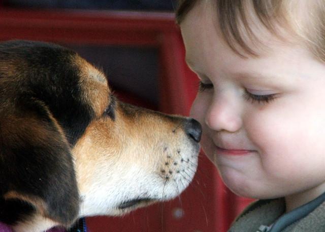 «Μαμά, θέλω σκυλάκι από τον Άγιο Βασίλη»!