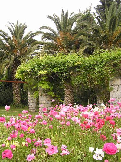 Πάμε για πρωτομαγιάτικο πικ νικ στο Βοτανικό Κήπο Διομήδους