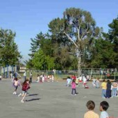 O Συνήγορος του Παιδιού ενάντια στη σχολική βία