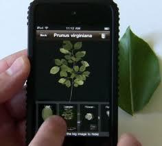 Εφαρμογή για το iPhone γίνεται βοτανολόγος