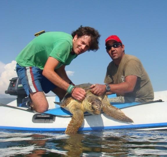Τι να κάνετε αν βρείτε μία τραυματισμένη θαλάσσια χελώνα