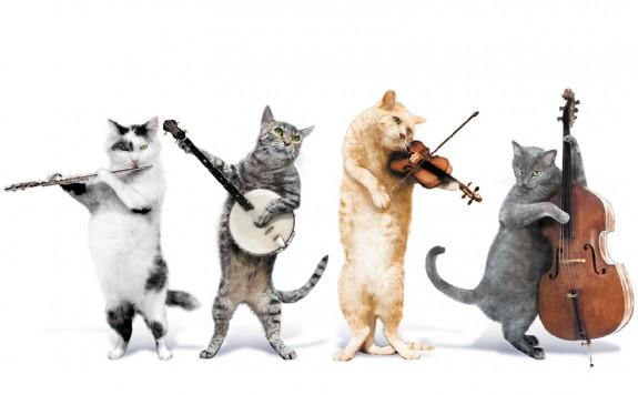 Μουσικές γάτες, μουσικοί γίγαντες και μια εγχείριση… con brio! στο Μέγαρο Μουσικής (5/2)