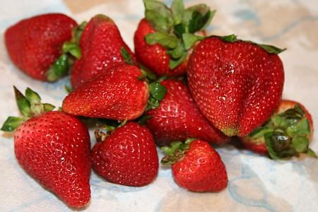 Ασπίδα για την υγεία μας οι φράουλες