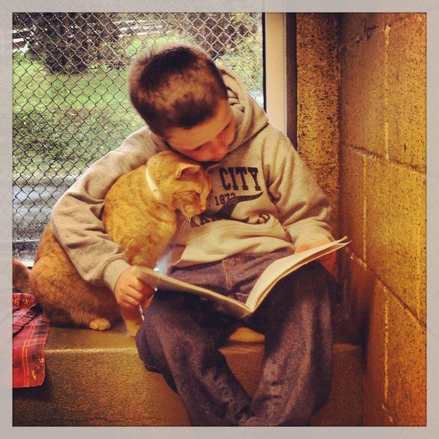 Κάντε τα παιδιά σας να αγαπήσουν τα βιβλία!
