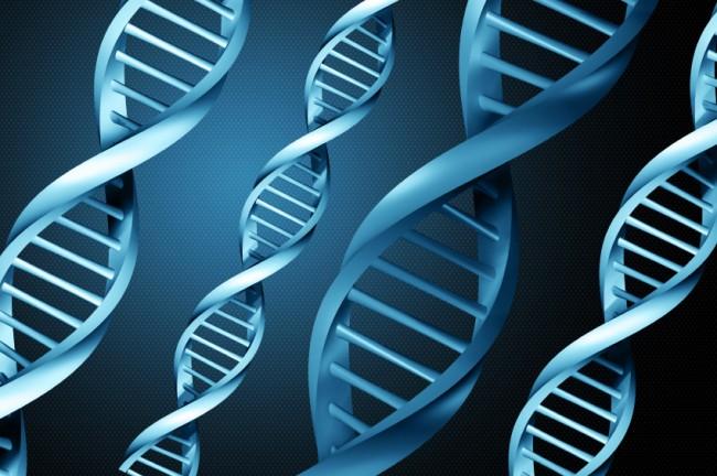 Περίπου 400 ελαττώματα έχουμε στο DNA μας