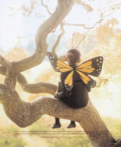 Υπέροχα φτερά για την πιο όμορφη πεταλουδίτσα