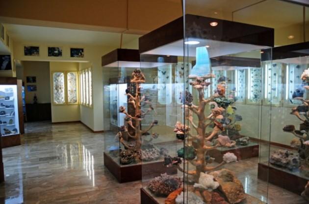 2steps_museum_natural_history_kotsiomitis_ligourio_epidavros_argolida_003