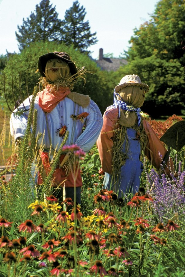 Scarecrow-23-David-Liebman-