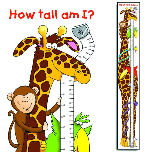 height-chart-500