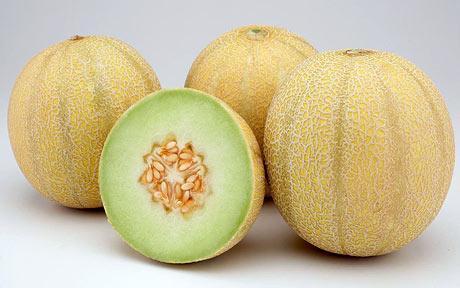 Lemon-Melons-460_782305c