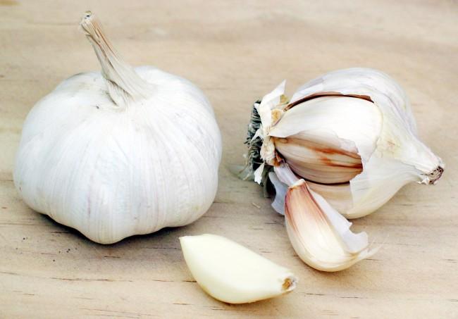 garlic_large